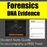 DNA Evidence Student Note Guide to accompany a FREE prezi!